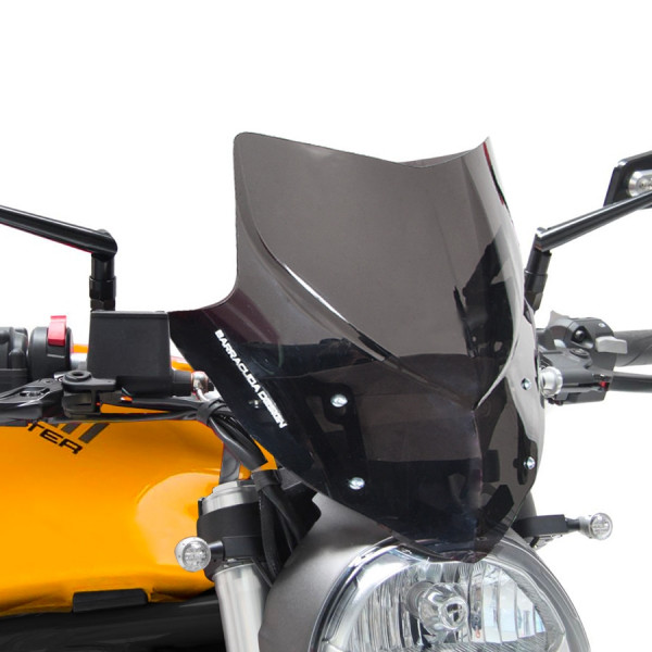 WINDSCHILD AEROSPORT DUCATI MONSTER 821